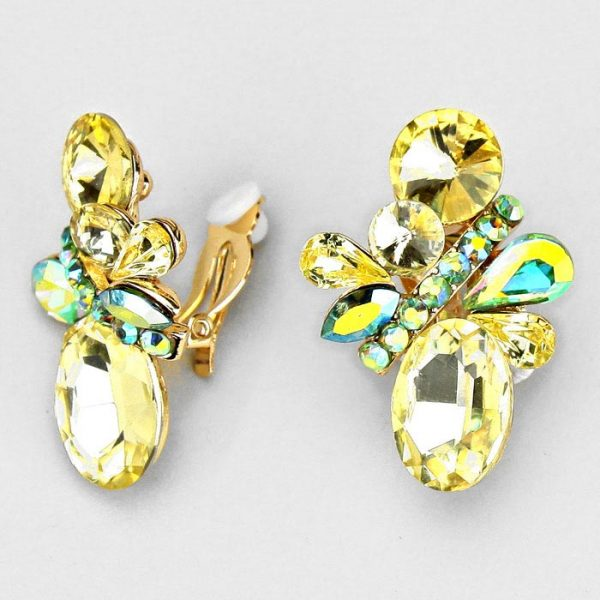 DT6016 Clip On Earrings