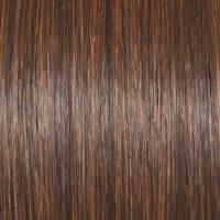 Raquel Welch Wig Color Bronzed Sable