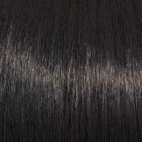 Raquel Welch Wig Color Ebony
