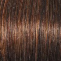 Raquel Welch Wig Color Glazed Hazelnut