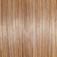 Raquel Welch Wig Color Golden Pecan