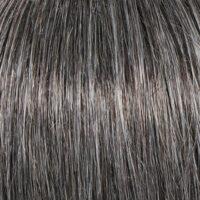 Raquel Welch Wig Color Gradient Charcoal