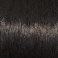Raquel Welch Wig Color Midnight Brown