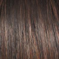 Raquel Welch Wig Color Shaded Hazelnut