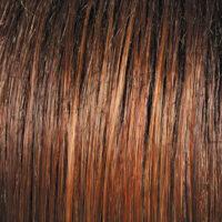 Raquel Welch Wig Color Spice