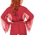 Sheer Robe Set – Burgundy – rear view